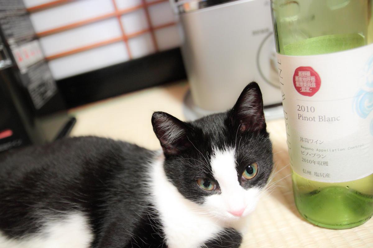 ピノとワインのピノ・ブランのビン