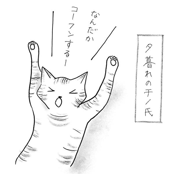 夕暮れのチノ氏「なんだかコーフンする!」